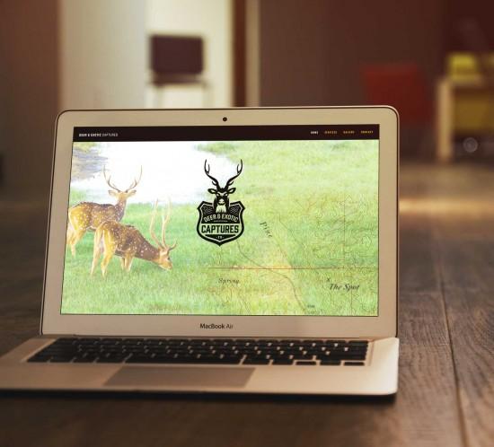 Graphic Engine Design web design